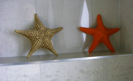 csillagok, csillagok